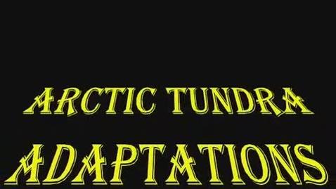 Thumbnail for entry Arctic Tundra