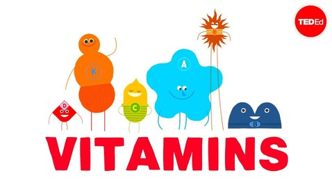 Thumbnail for entry How do vitamins work? - Ginnie Trinh Nguyen