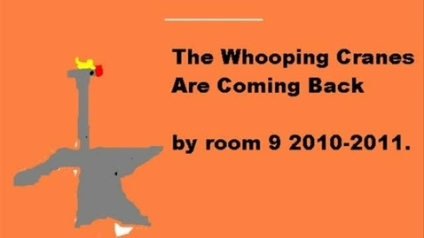 Thumbnail for entry Whooping Cranes are Coming Back