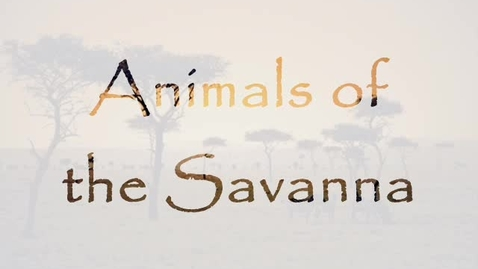 Thumbnail for entry Savanna Biome Animals