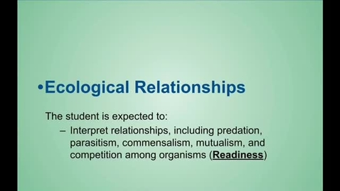 Thumbnail for entry Relationships Notes