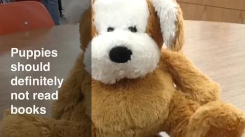 Thumbnail for entry Bears Should Definitely Not Read Books