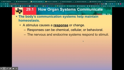 Thumbnail for entry Nervous System Notes
