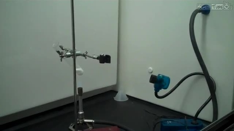 Thumbnail for entry gummi bear in sodium oxalate