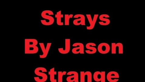 Thumbnail for entry Strays Book Trailer