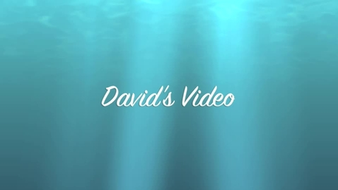 Thumbnail for entry David's Video