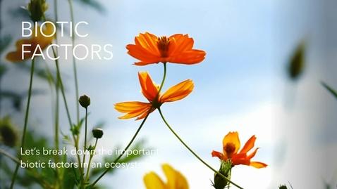 Thumbnail for entry Biotic Factors.webm