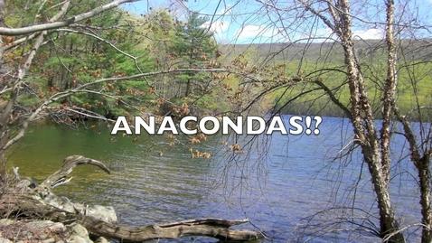 Thumbnail for entry anacondas
