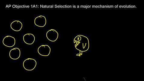 Thumbnail for entry AP 1A1 Part B Natural Selection Video