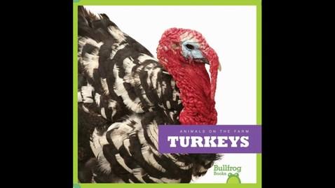 Thumbnail for entry Turkeys on the Farm by Wendy Strobel Dieker