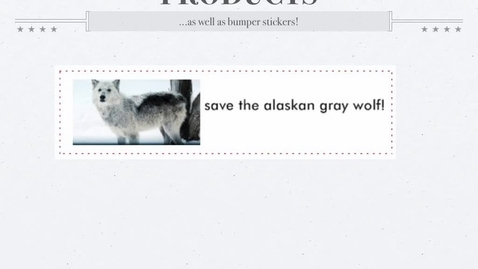 Thumbnail for entry Save the Alaskan Grey Wolves