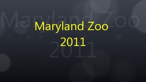 Thumbnail for entry Maryland Zoo Trip 2011-2012