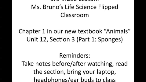"""Thumbnail for entry Ms. Bruno's 3rd Animals video """"Sponges"""""""