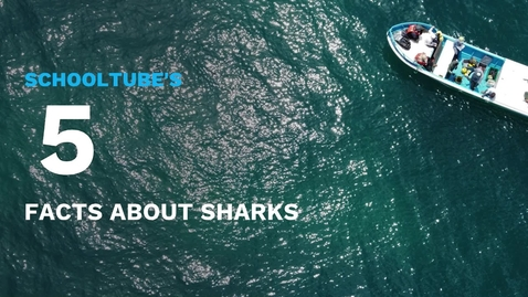 Thumbnail for entry SchoolTube's 5 Facts About Sharks