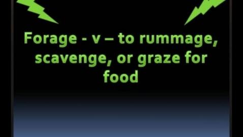 Thumbnail for entry forage - BrainyFlix.com Vocab Contest
