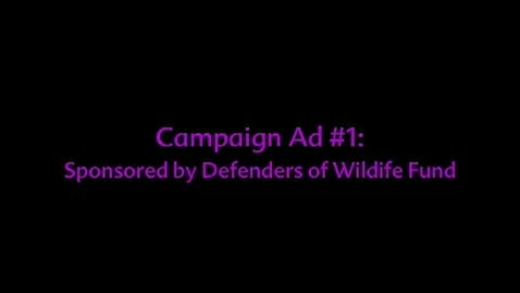 Thumbnail for entry Rhetorical Analysis:  Campaign Ads