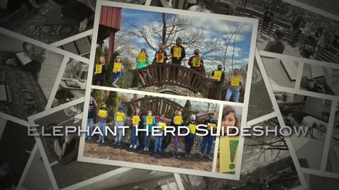 Thumbnail for entry Elephant Herd Slideshow