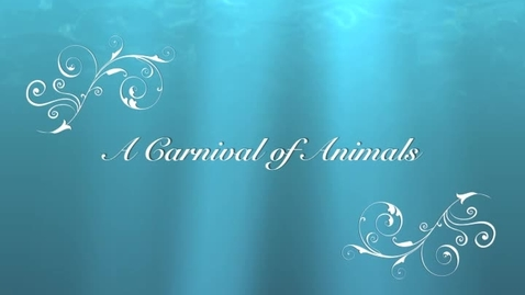 Thumbnail for entry Carnival of Animals