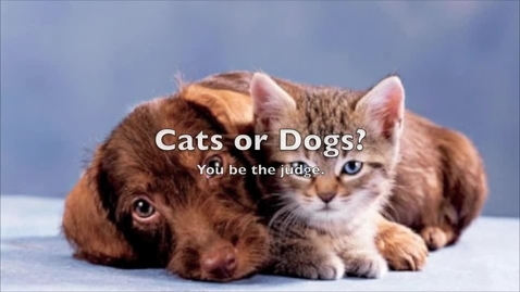Thumbnail for entry Dogs or Cats? Which is your favorite