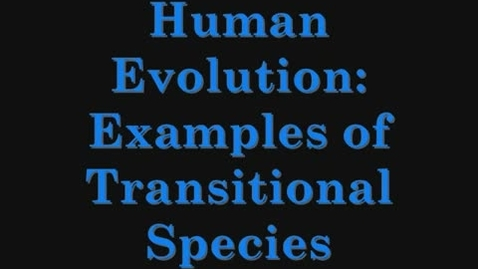 Thumbnail for entry Human Evolution