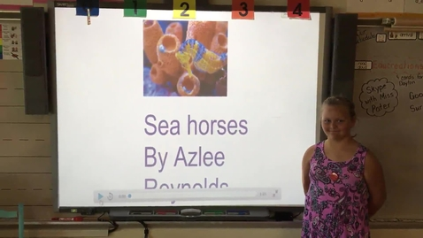 Thumbnail for entry Azlee Reynold Seahorse research project