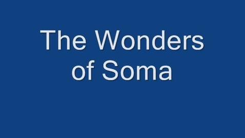 Thumbnail for entry Soma