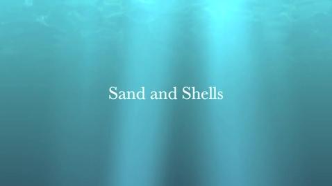 Thumbnail for entry Sand & Shells