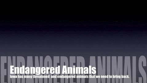 Thumbnail for entry Endangered Animals