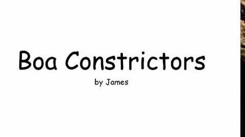 Thumbnail for entry Boa Constrictors by James