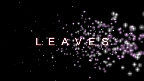 Thumbnail for entry leaves