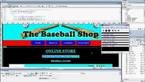 Thumbnail for entry Copy/Paste code into store.html