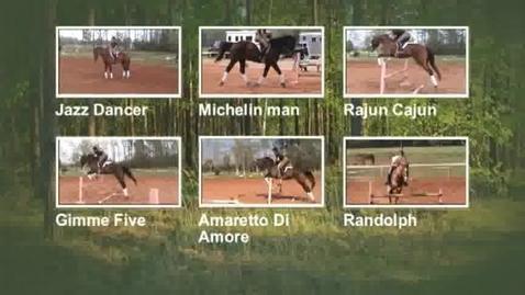 Thumbnail for entry Sunshine Oaks sport horses