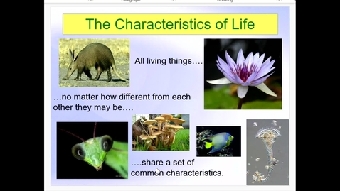 Thumbnail for entry Introduction to Biology Part 2 Living Things