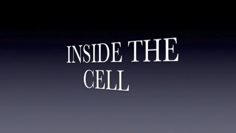 Thumbnail for entry Cell Video_4th Period_#1