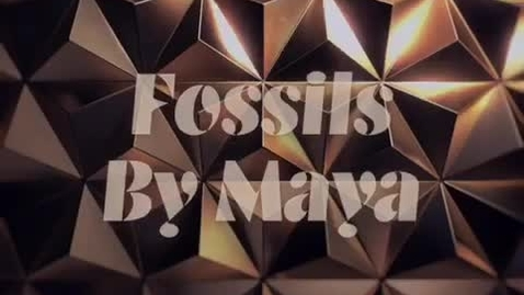 Thumbnail for entry Hollow fossils are called cast fossils