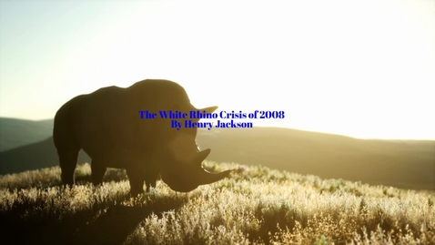 Thumbnail for entry White Rhino Crisis Henry Jackson