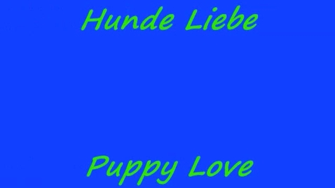 Thumbnail for entry Hunde Liebe