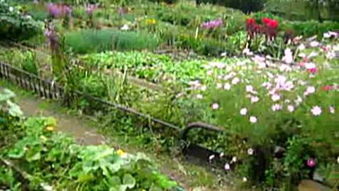 Thumbnail for entry Korean Gardens 26