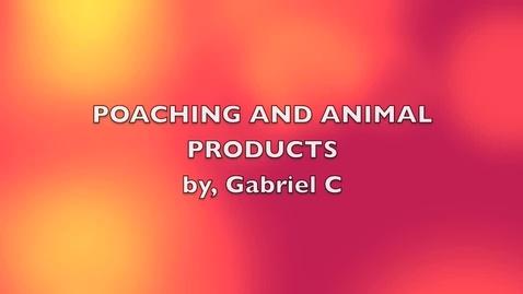 Thumbnail for entry Poaching