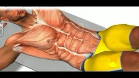 Thumbnail for entry Abdomin In Action Quiz video for MOODLE
