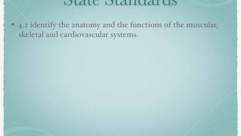 Thumbnail for entry 2 Skeletal System