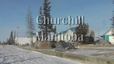 Thumbnail for entry Churchill, Polar Bear Capital of the World