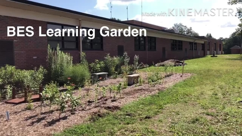 Thumbnail for entry BES Learning Garden (Summer 2020)