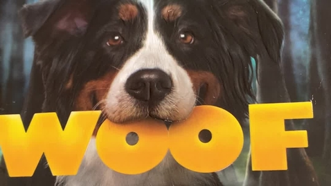 Thumbnail for entry Quinn, Spencer - Woof