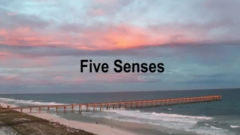 Thumbnail for entry Five Senses