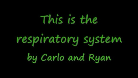 Thumbnail for entry Respiratory System Project