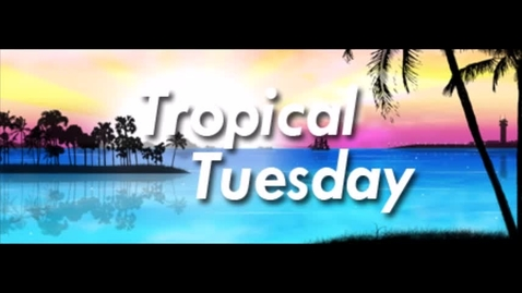 Thumbnail for entry Spriit Week Tropical Tuesday