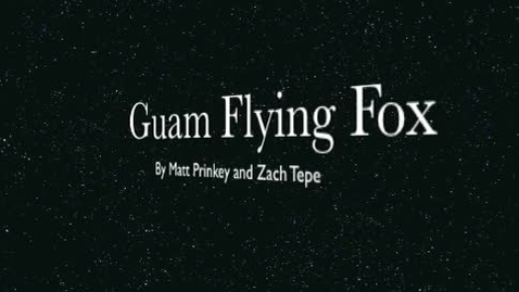 Thumbnail for entry The Guam Flying Fox period 1