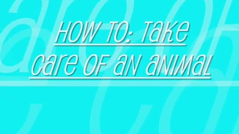Thumbnail for entry How to take care of animals