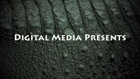 Thumbnail for entry Sean Finn: Alligator Festival Poster Contest Presentation